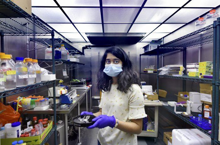 Photo os Sriya Kongala, wearing a mask, in the lab.